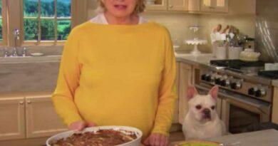 Lanza Martha Stewart productos con mariguana para mascotas